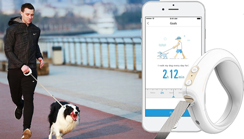 go-smart-pet-leash-product