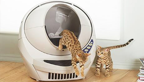 litter-robot-automatic-cat-