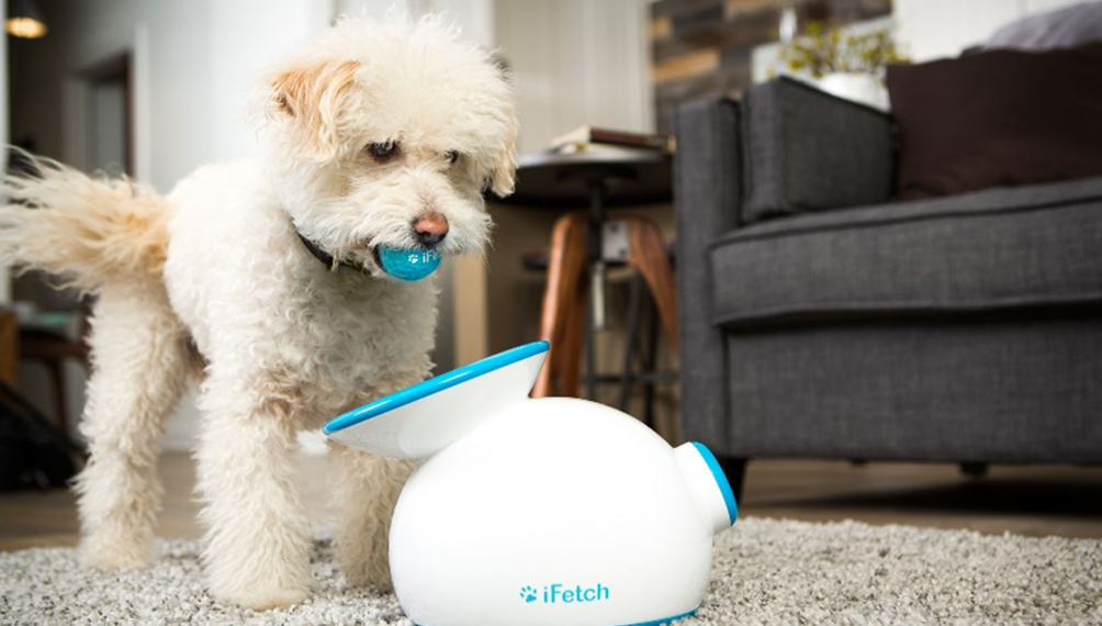 ifetch-pet-toy-automatic-launcher