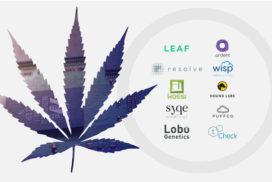 d1-blog-cannabis-tech-banne